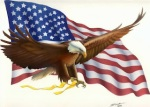 US Flag & Eagle